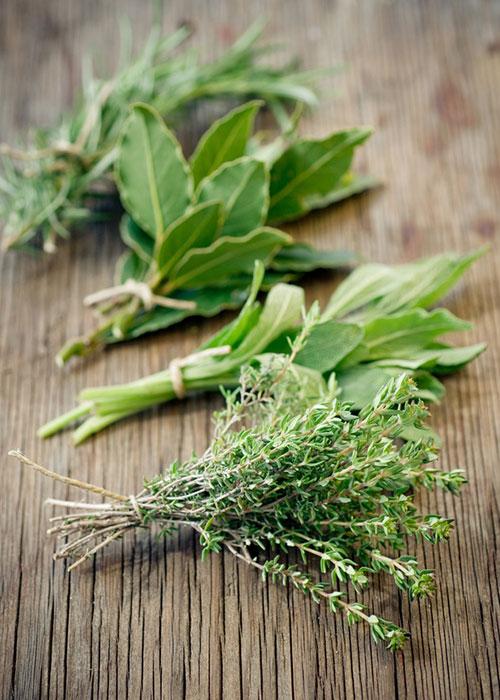 tuscan-herb